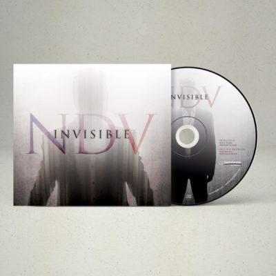 Nick D'Virgilio – Invisible (Gatefold Clear 2LP + Digipack CD – Bundle)